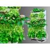 Фитомодули для вертикального озеленения HydroFalls