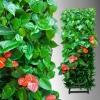 Вертикальные сады и фитомодули HydroFalls